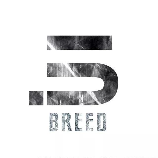 The Breed Studio (4/4)